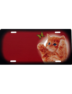 Kattekilling orange - rødt skilt